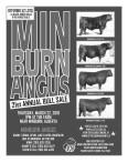 MINBURN ANGUS 21st ANNUAL BULL SALE