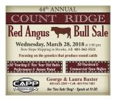 44th ANNUAL COUNT RIDGE Red Angus Bull Sale