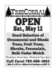 Good Selection of Trees at Tree Corral
